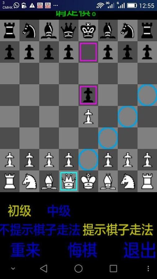 玩玩国际象棋