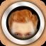 红头发的元素 Ginger Booth