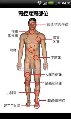 经络疼痛部位分布图