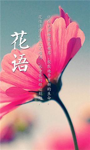 網路花店-豐華苑 Rich Flower-網路花店-提供情人花束,代客訂花送花,花藝設計