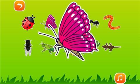 皮皮猴认昆虫 教育 App-癮科技App
