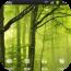 程式庫與試用程式App|绿色森林魔秀桌面主题 LOGO-3C達人阿輝的APP