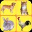 幼教启蒙之动物篇 書籍 App LOGO-硬是要APP
