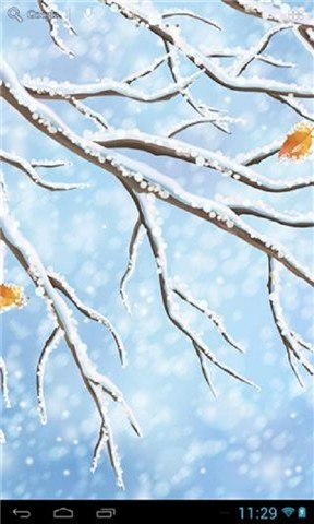 纯洁冬季高清壁纸