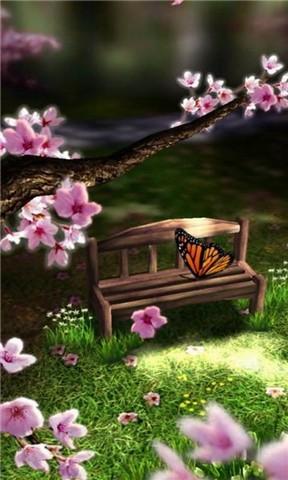 蝴蝶动态壁纸