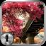 童话镇一键锁屏 工具 App LOGO-APP試玩