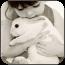 我的兔宝贝动态玩壁纸 個人化 LOGO-阿達玩APP