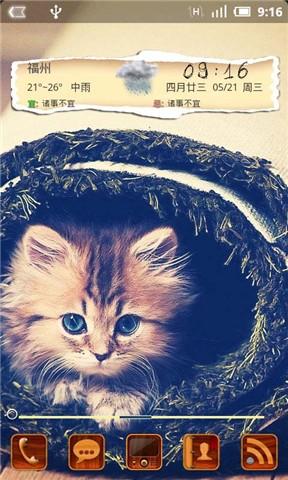 小猫咪-91桌面主题