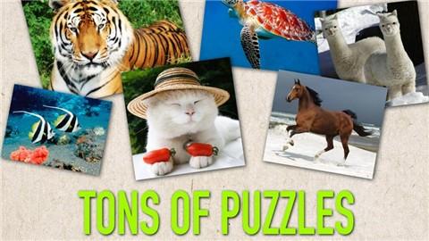 玩益智App|Pop Puzzle免費|APP試玩