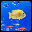 海底世界动态壁纸 個人化 App LOGO-APP試玩