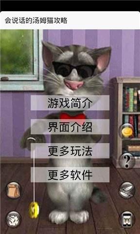 会说话的汤姆猫攻略