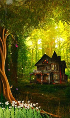 林间幽景-动态壁纸
