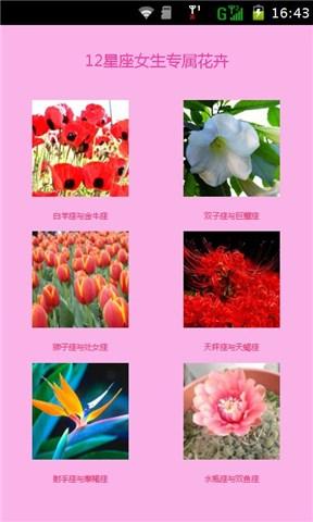 12星座女生专属花卉