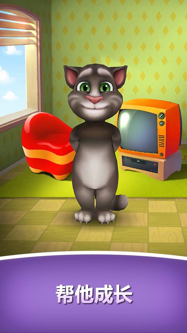 我的汤姆猫图片